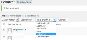 benutzer-rolle